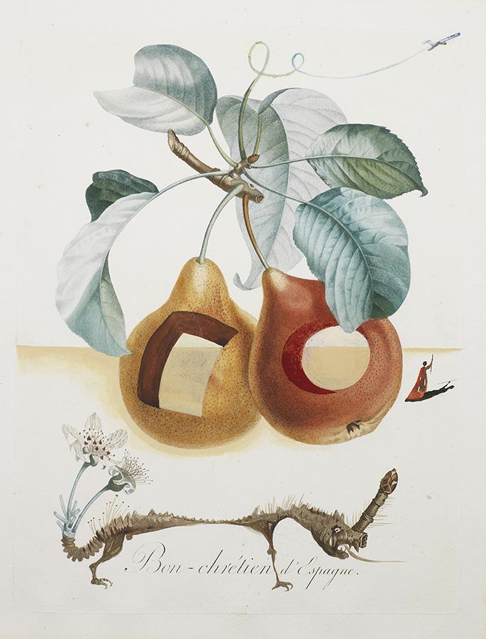 Fruits troués (Những trái cây thủng)