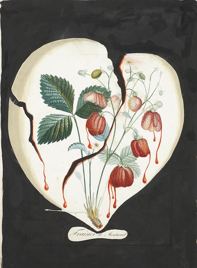 Coeur de fraises (Trái tim Dâu)